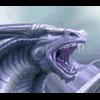 flingo - último comentário por Dragon23